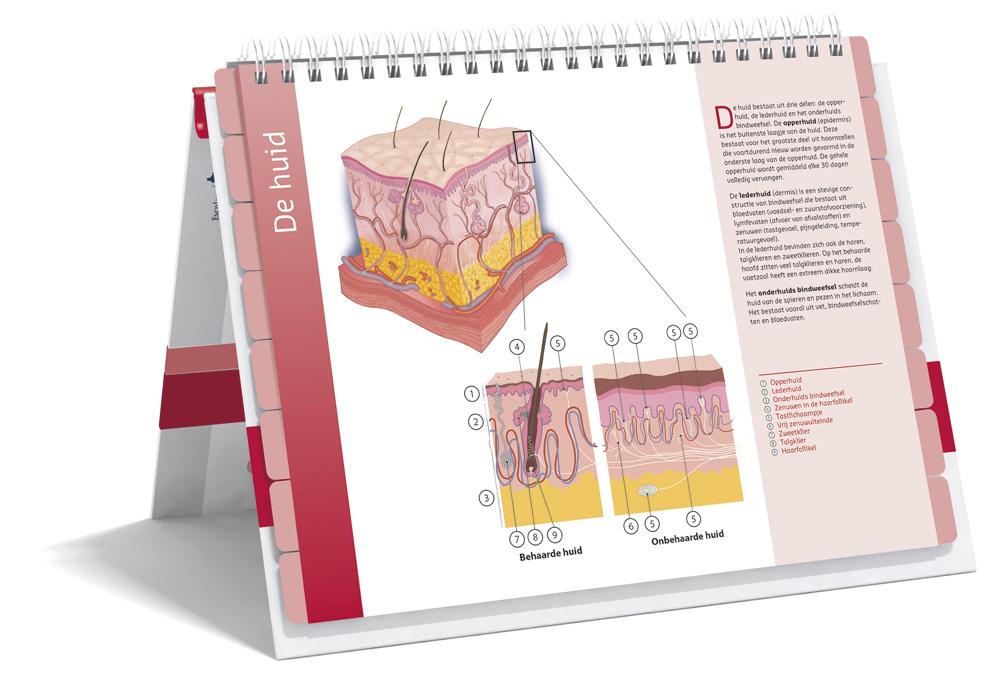 Zorgatlas Dermatologie - Binnenwerk