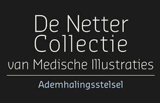 De Netter Collectie