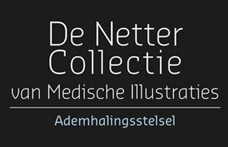 De Netter Collectie